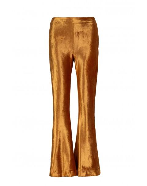 Bronze Velvet Bell Pants